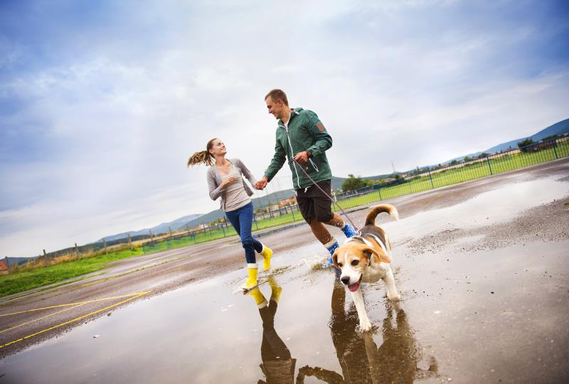 Walking Fun Date Man Woman Dog